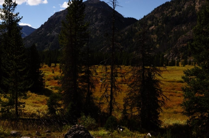 Colorful Shoshone National Forest with Sheep Mesa Outfitters