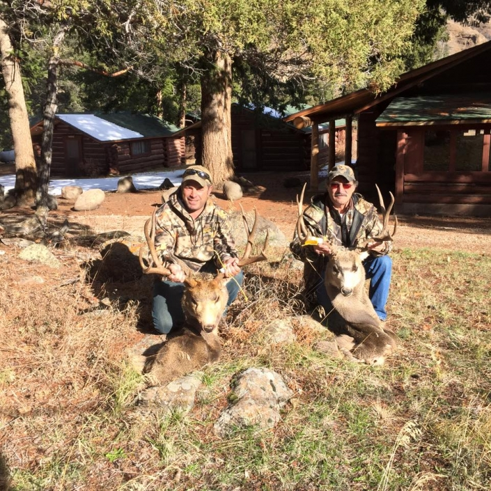 Deer Displays of hunts with Sheep Mesa Outfitters, Cody, Wyoming