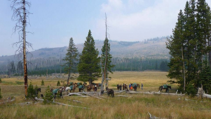 Settling into Camp with Sheep Mesa Outfitters