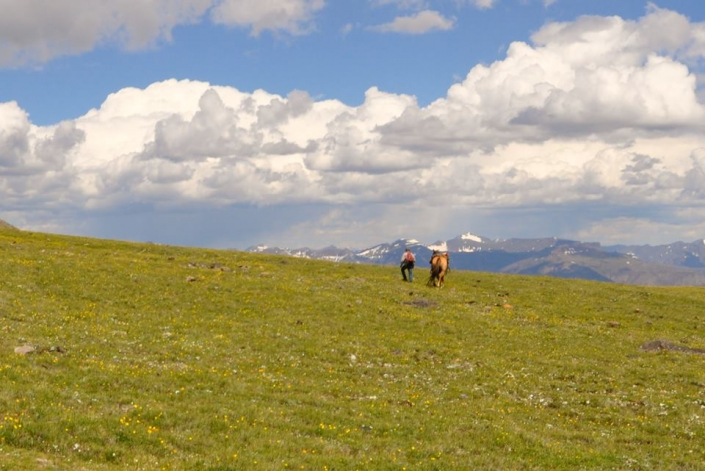 Hiking The Meadow with Sheep Mesa Outfitters