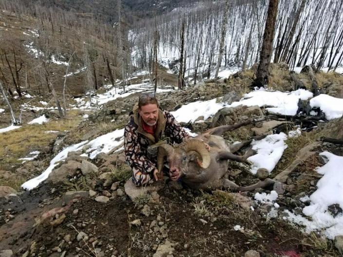 Beautiful Ram Score - Sheep Mesa Outfitters, Cody, Wyoming