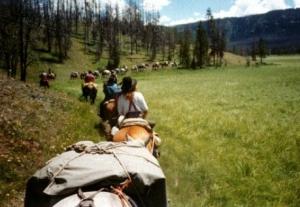 Summer Horseback Trips - Sheep Mesa Outfitters
