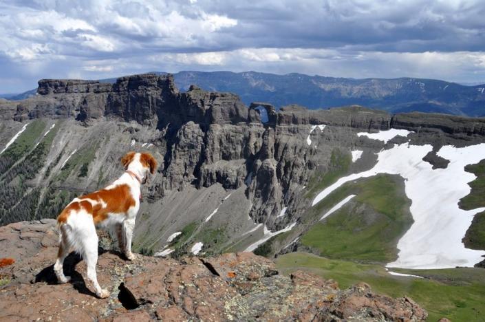View of Sheep Mesa