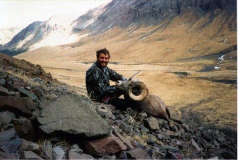 Big Horn Sheep Hunt Sheep Mesa Outfitters