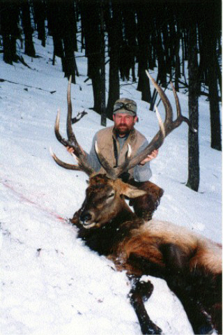Elk Hunt With Sheep Mesa Outfitters